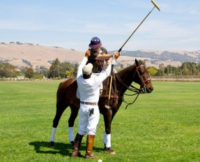 Learn to Play Polo in 10 Weeks!