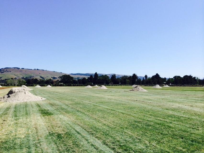 Sand-on-field