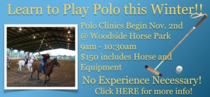 Learn to Play Polo Clinics @ Woodside Horse Park Polo Arena | Redwood City | California | United States