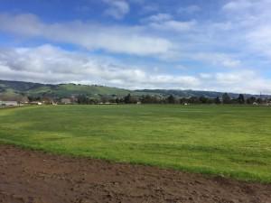 field 2016