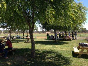 picnic area polo