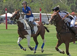 Photo by Marty Cheek Two riders race for the ball during a recent polo match.